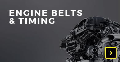 Engine Belts & Timing